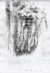 Zeichnung 14